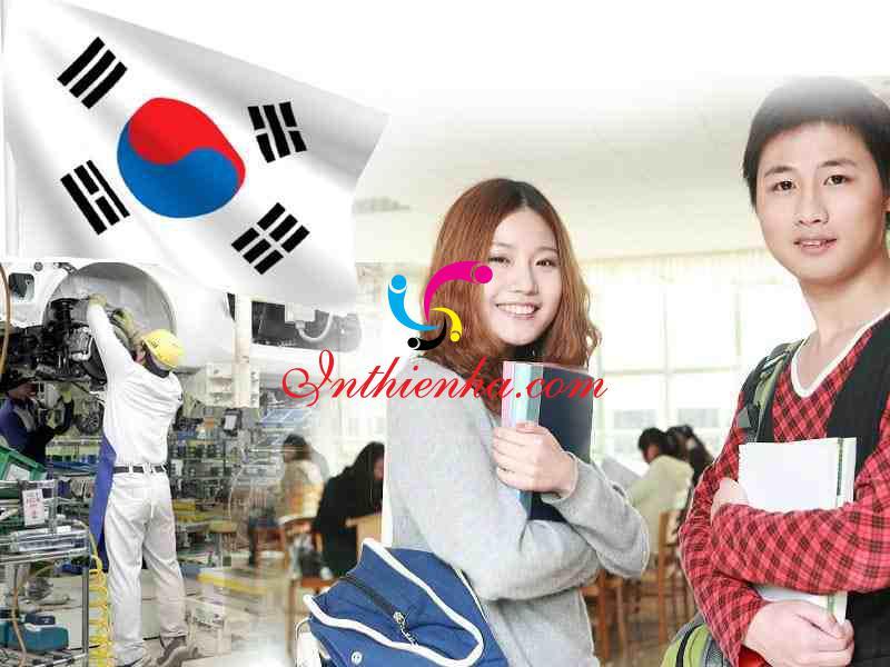 nhu cầu học tiếng Hàn gia tăng