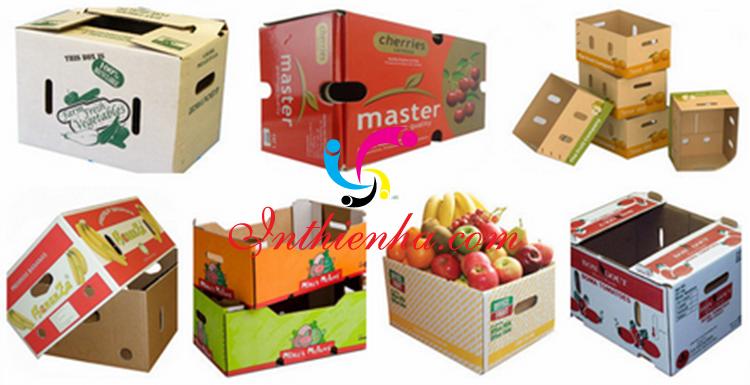 In thùng carton đựng trái cây